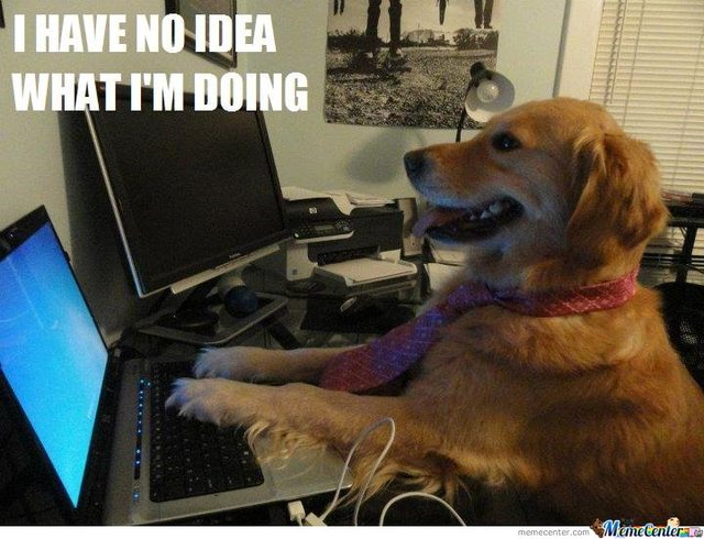 meme_dog how do you deal with seo information overload? adventures in